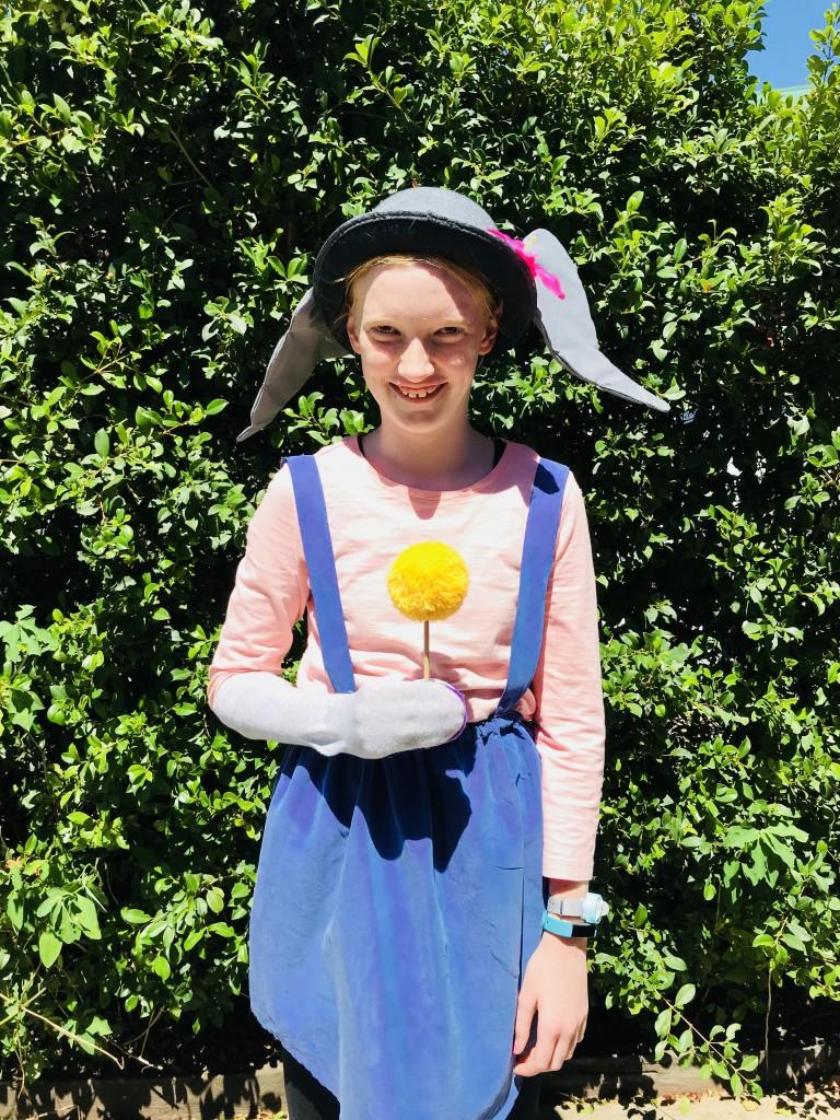 Book week costume ideas